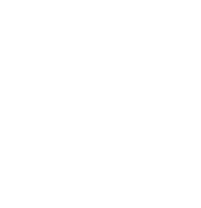 SVdP National Logo